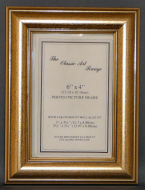 E Range - Dome Gold Style Picture Frame