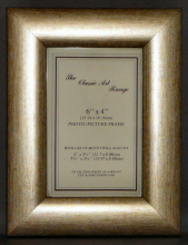 G Range - Dome Silver Picture Frame